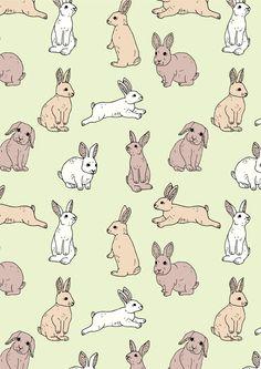 Bunnies by Emma Margaret Illustration