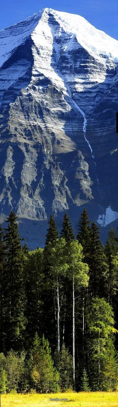 There are so many beautiful peaks in this world to see. Come explore some in/around Yosemite with us http://SierraSpirit.biz