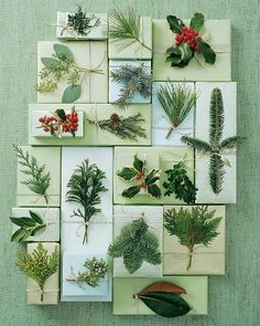 Festive Christmas Wrapping with live flora. Love the use of plants