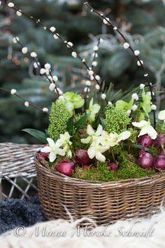 Frostsäkert till trappan | blomsterverkstad | Sköna Hem