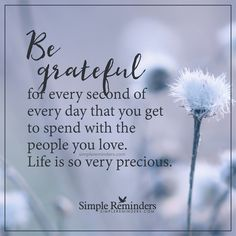Be grateful for every second Be grateful for every second of every day that you get to spend with the people you love. Life is so very precious. — Unknown Author