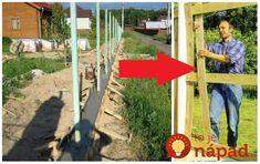 """Chystáte na výmenu plotu, alebo práve vyberáte, aké možnosti máte pri výbere oplotenia? Prinášame vám šikovný nápad, ktorý sa vám môže hodiť. Plot, ktorý si doslova """"upletiete"""" a to tak, ako chcete – zvislo, vodorovne alebo inak. Základom sú ohybné dielce, ktoré jednoducho opletiete okolo stĺpikov. Sú ľahké, no zabezpečia vám presne také isté súkromie,... Backyard, Good Things, Outdoor Decor, Gardening, Ideas, Stuff Stuff, Yard, Backyards, Lawn And Garden"""