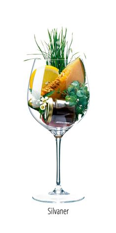 Wine Chart, Wine Folly, Wine Varietals, Homemade Liquor, Vides, Cabernet Sauvignon, Disney Food, Foodie Travel, Yummy Drinks
