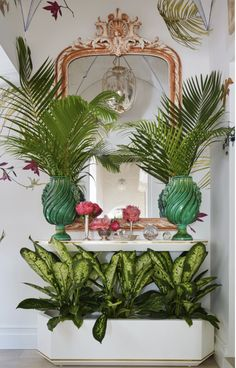 Adorable Beach Style Decorating Ideas For Your Kitchens - Beach house decorating should never be a chore, in fact, when deciding how to decorate a vacation home or beach house you need to keep one thing in mi. Palm Beach Decor, Tropical Home Decor, Tropical Design, Beach Design, Tropical Houses, Beach House Decor, Beach Houses, Tropical Style, Retro Beach House