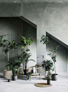 Lotta Agaton Green Interior Swedish | Scandinavia Standard