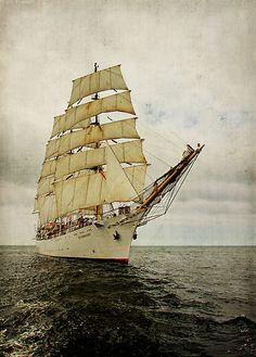 """The Polish three mastet barque """"Dar Młodzieży""""  by smilyjay"""