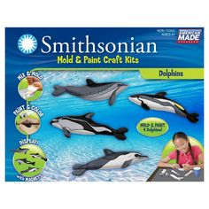 Paint Skullduggery Eyewitness Kits Perfect Cast Dolphin Cast Display