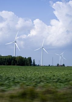 Windmills on the farms...I see these everyday, just outside of Ubly where I live.