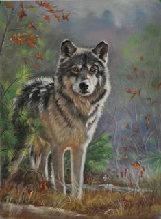 Archived Paintings | Wolf Portraits