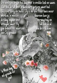 Morning Blessings, Good Morning Wishes, Lekker Dag, Evening Greetings, Afrikaanse Quotes, Goeie More, The Secret Book, Prayer Board, Strong Quotes