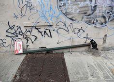 Banksy at NY