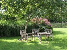 bijv. bij nieuwe esdoorn achter bij vijver  Landelijke Tuinen - Tuincentrum de Driesprong