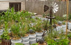 Three Easy, Low-Tech Ways to Keep Container Gardens Watered