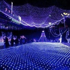 Blue 100 LED Net Mesh Fairy Lights Twinkle Lighting Christmas Wedding Party US/110V