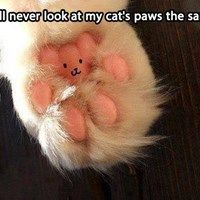 This is TOTALLY something I will do. I'm kind of assuming that cat was de-clawed.