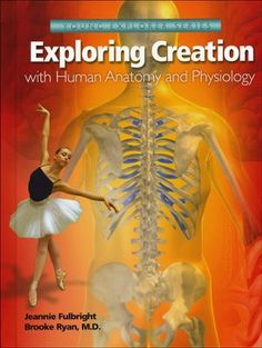 Apologia Exploring Creation with Anatomy and Physiology: Worksheets/Tests - Companions to Apologia's textbook, Exploring Creation with Human Anatomy and Physiology by Jeannie Fulbright a Anatomy And Physiology Textbook, Apologia Anatomy, Homeschool Science Curriculum, Homeschooling, Homeschool Books, Science Classroom, Classroom Ideas, Human Body Systems, Anatomy Study