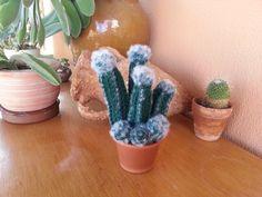 Tutorial de crochet/ganchillo,cactus peludito.