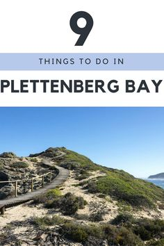 Plettenberg Bay 9 Things to do on the Garden Route, South Africa, Garden Route Itinerary
