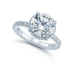 The Round Ali Setting - Micro-Pave - Engagement Rings