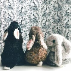 Mesmerizing Crochet an Amigurumi Rabbit Ideas. Lovely Crochet an Amigurumi Rabbit Ideas. Knitting For Kids, Knitting Projects, Baby Knitting, Crochet Projects, Knitting Patterns, Sewing Projects, Crochet Baby, Knitted Bunnies, Knitted Animals