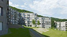 084 Ersatzneubauten Triemli Zürich - von Ballmoos Krucker Architekten