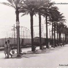 Anys 50, envelats a la platja per la festa major. Foto Judit Juan. #badalona…