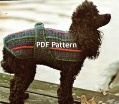 Very cute! Going to have to make one for my Grand Dog. Vintage Small Dog Poodle Sweater Jacket by BubbleGumInTheMail