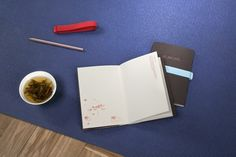 Jógový deník