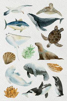 Sea Animals Drawings, Art Drawings, Drawing Animals, Watercolor Whale, Watercolor Animals, Whale Illustration, Watercolor Illustration Tutorial, Cute Animal Illustration, Animal Illustrations