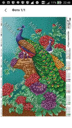 Cross Stitch Bird, Cross Stitch Charts, Cross Stitch Designs, Cross Stitch Patterns, Chrochet, Octopus, Peacock, Birds, Blanket