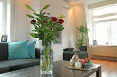 Dit hippe appartement ligt in hartje Alkmaar-centrum. Omdat Trendy Centre zich op de derde en dus bovenste etage van het appartementgebouw bevindt, heeft u een leuk uitzicht op de daken van de gezellige Alkmaarse binnenstad. Gelijk om de hoek vindt u het bekende Waagplein met de gezelligste terrassen, cafés en restaurants van Alkmaar!