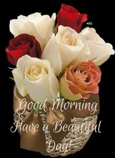Good Morning sister have a nice day ☕ Nice Good Morning Images, Good Morning Picture, Good Morning Messages, Good Morning Quotes, Morning Sayings, Good Morning Sister, Good Morning Good Night, Morning Rose, Good Morning Flowers
