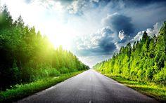 Green Road Wallpaper Of Beautiful Landscape Wallpaper HD