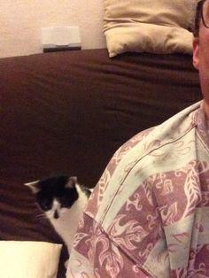 Quand un chat veut ta place.