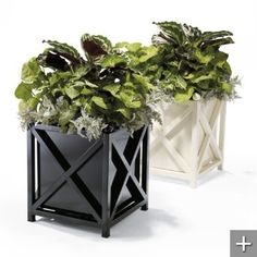 Put these flower pots on my front porch kind by the front door.