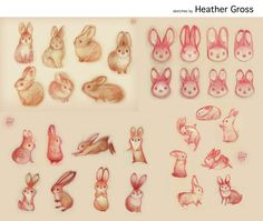 Rabbit sketches by Heather Gross (© 2013)