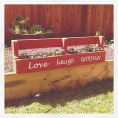 Another garden box