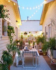 light + plant-filled garden
