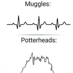 And only potterheads care enough to make an accurate EKG tracing. Harry Potter Tumblr, Harry Potter World, Magie Harry Potter, Estilo Harry Potter, Cute Harry Potter, Mundo Harry Potter, Harry Potter Spells, Harry Potter Drawings, Harry Potter Pictures