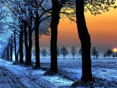 Winter Colors, Czech Republic - (Click the pic for reading full information of the place and many more)