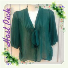"HP  Decree Green Sheer Button-Front Blouse  ""Work Week Essentials"" Party Host Pick   Decree Classy Sheer Green Button Up Blouse  3/4 Sleeve  Button Up Front  V-Neck with tie  Size Large  ⏬⏬NEWLY REDUCED⏬⏬  This Closet Follows PM Rules   ❌NO TRADES ❌NO PAYPAL ❌No Additional Discounts on Reduced or Sale items Decree Tops Blouses"