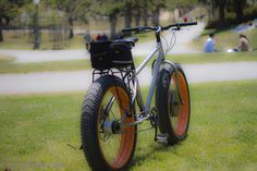 Titanium electric bike with alfine in back and crystalyte up front