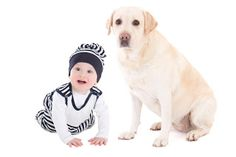 Snaggle Foot Dog Walks and Pet Care - Round Lake, IL: 3 Tips for Preparing your Dog for Baby's Arrival