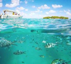 Ile des Deux Cocos Mauritius Honeymoon, Mauritius Travel, Mauritius Island, Wedding Honeymoons, Places Of Interest, Beach Hotels, Strand, Great Places, Travel Guide
