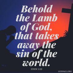 John 1:29 | Bible Verse