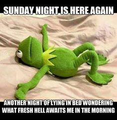Funny Memes Pictures - Enjoy the Best Collection Ever - Funny - Humor bilder 9gag Funny, Funny Kermit Memes, Haha Funny, Funny Jokes, Funny Stuff, Hilarious Work Memes, Funny Memes About Work, Funniest Memes, Week End Quotes