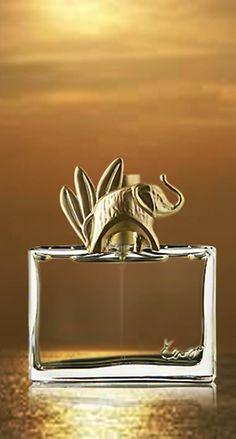 Kenzo Jungle one of my favorites! - Parfumerie et parapharmacie - Parfumeries - Kenzo