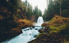 Download wallpapers waterfall, forest, trees, autumn, mountain river, mountains, USA