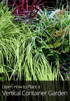 Planting a Vertical Garden