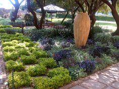 Garden Spaces, Koi, Garden Landscaping, Swimming Pools, Garden Design, Gardens, Landscape, Plants